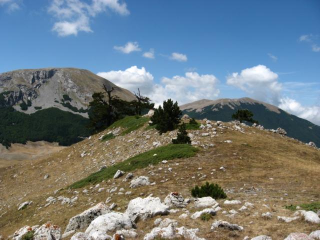 1200px-Monte_Pollino_e_Serra_del_Prete_dal_contrafforte_ovest_di_Serra_delle_Ciavole.