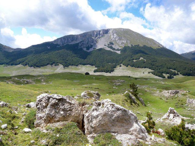 Monte_Pollino_(P.N.P.)-2